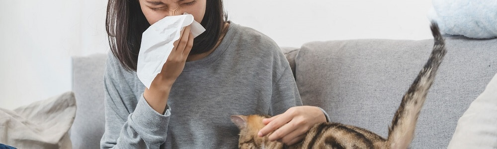 Huisdierenallergie symptomen header